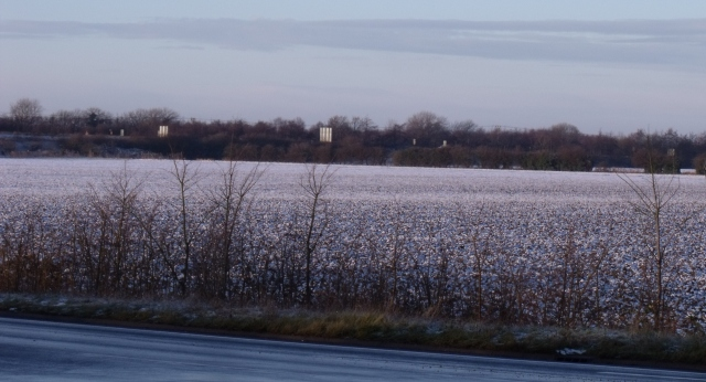 Jan 02 - snowy fields